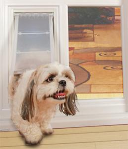 Dog in a Pet Patio Door